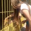 Z pomocą dla zwierząt_5