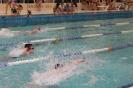 Mistrzostwa Miasta Turku w Pływaniu_6