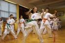 Jubileuszowy obóz karateków_9