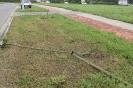 Kto połamał drzewka na Muchlińskiej?_1
